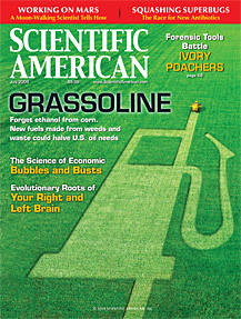 Grassoline: Biofuels beyond Corn - Scientific American, July 2009